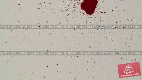Red blood drips on the white paper. Стоковая анимация, видеограф Dzmitry Astapkovich / Фотобанк Лори