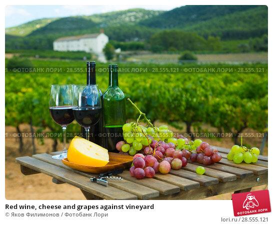 Купить «Red wine, cheese and grapes against vineyard», фото № 28555121, снято 24 апреля 2019 г. (c) Яков Филимонов / Фотобанк Лори