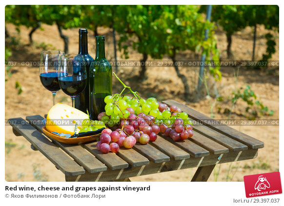 Купить «Red wine, cheese and grapes against vineyard», фото № 29397037, снято 24 февраля 2019 г. (c) Яков Филимонов / Фотобанк Лори
