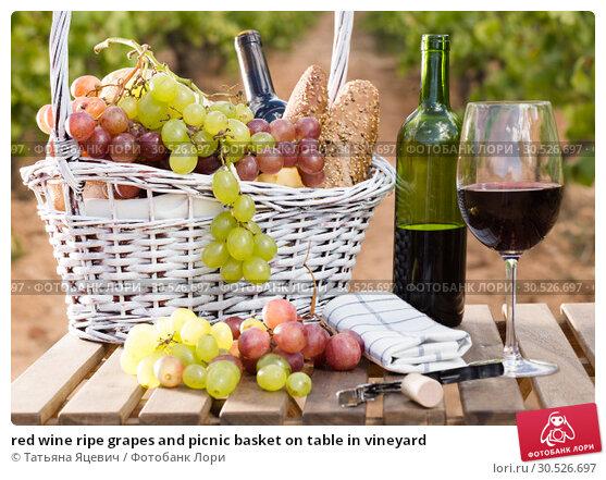 Купить «red wine ripe grapes and picnic basket on table in vineyard», фото № 30526697, снято 11 сентября 2017 г. (c) Татьяна Яцевич / Фотобанк Лори