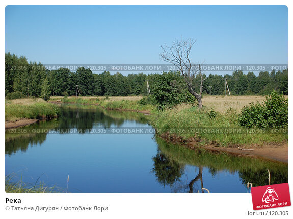 Река, фото № 120305, снято 11 августа 2007 г. (c) Татьяна Дигурян / Фотобанк Лори
