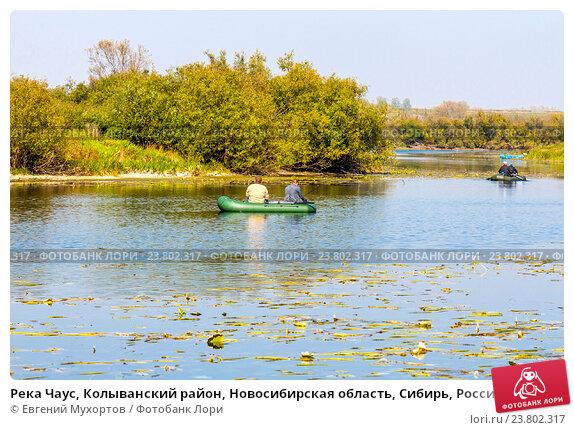 рыбалка новосибирск чаус
