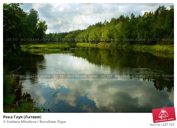 Река Гауя (Латвия), фото № 237737, снято 26 августа 2006 г. (c) Svetlana Mihailova / Фотобанк Лори