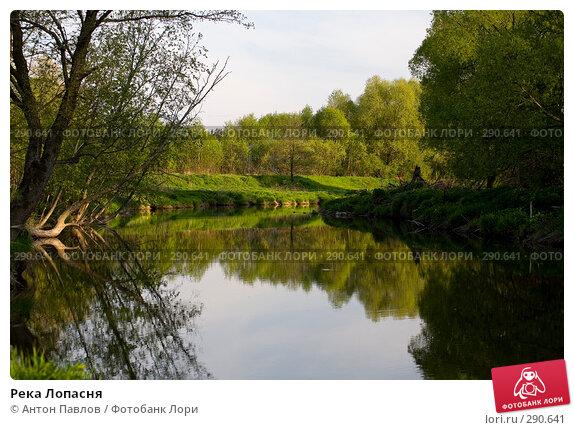 Река Лопасня, фото № 290641, снято 11 мая 2008 г. (c) Антон Павлов / Фотобанк Лори
