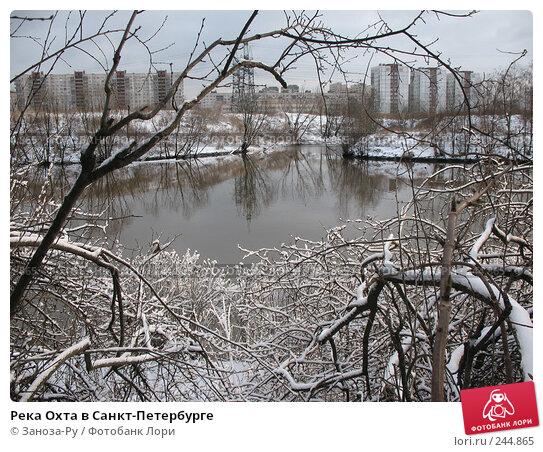 Купить «Река Охта в Санкт-Петербурге», фото № 244865, снято 29 февраля 2008 г. (c) Заноза-Ру / Фотобанк Лори