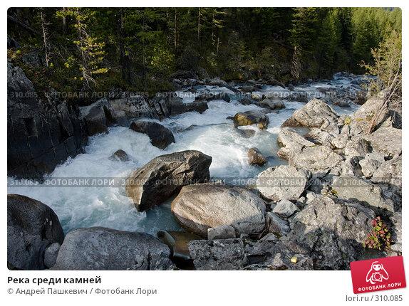 Купить «Река среди камней», фото № 310085, снято 24 апреля 2018 г. (c) Андрей Пашкевич / Фотобанк Лори