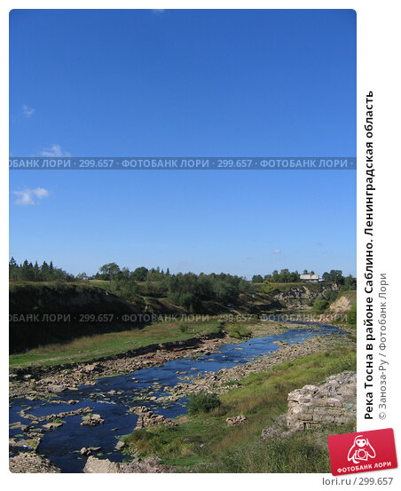 Река Тосна в районе Саблино. Ленинградская область, фото № 299657, снято 16 сентября 2006 г. (c) Заноза-Ру / Фотобанк Лори