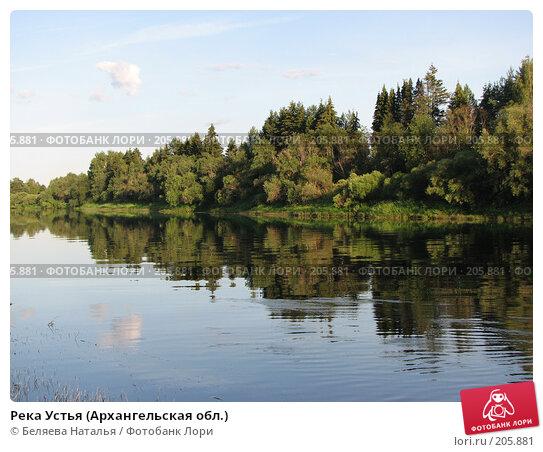 Река Устья (Архангельская обл.), фото № 205881, снято 24 июля 2007 г. (c) Беляева Наталья / Фотобанк Лори