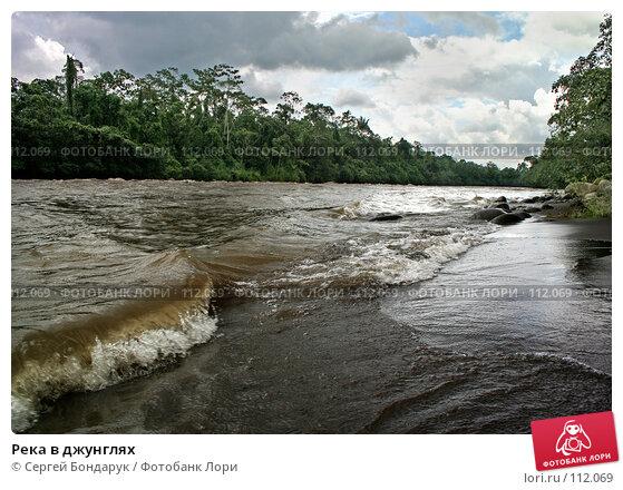 Река в джунглях, фото № 112069, снято 27 января 2007 г. (c) Сергей Бондарук / Фотобанк Лори