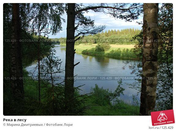 Река в лесу, фото № 125429, снято 8 июля 2007 г. (c) Марина Дмитриевых / Фотобанк Лори
