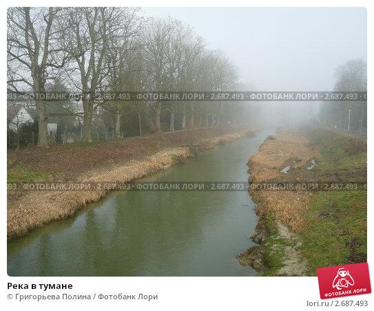 Река в тумане. Стоковое фото, фотограф Григорьева Полина / Фотобанк Лори