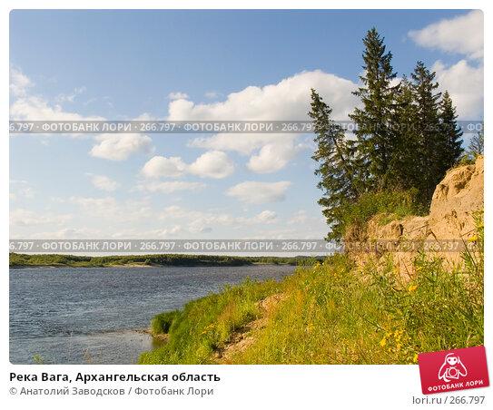 Река Вага, Архангельская область, фото № 266797, снято 2 августа 2006 г. (c) Анатолий Заводсков / Фотобанк Лори