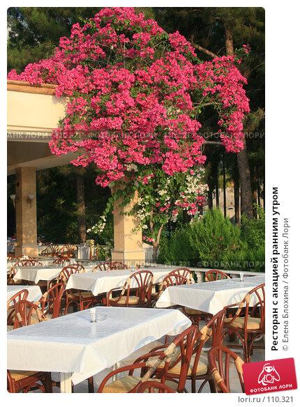 Ресторан с акацией ранним утром, фото № 110321, снято 14 августа 2007 г. (c) Елена Блохина / Фотобанк Лори