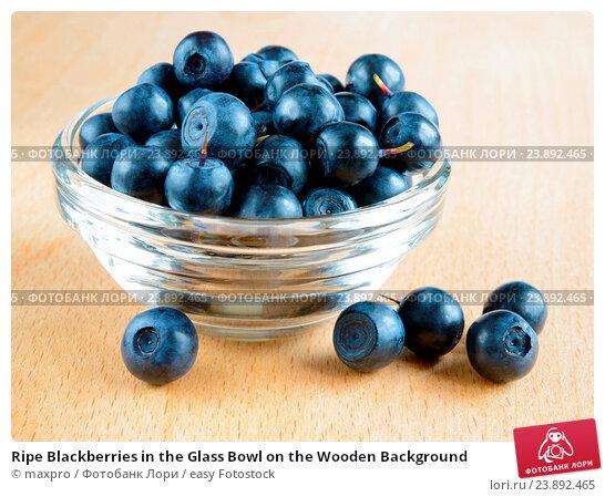 black berries in june