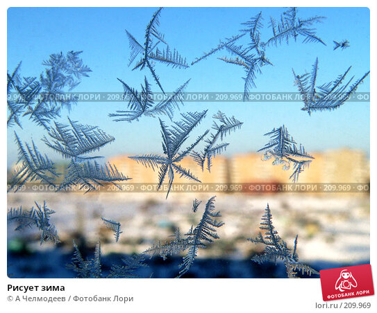 Рисует зима, фото № 209969, снято 17 января 2006 г. (c) A Челмодеев / Фотобанк Лори