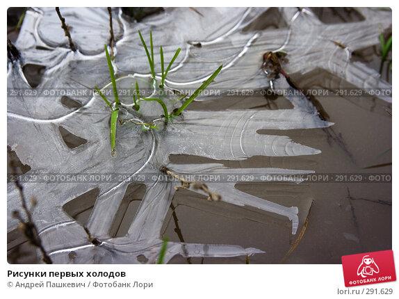 Рисунки первых холодов, фото № 291629, снято 26 марта 2017 г. (c) Андрей Пашкевич / Фотобанк Лори