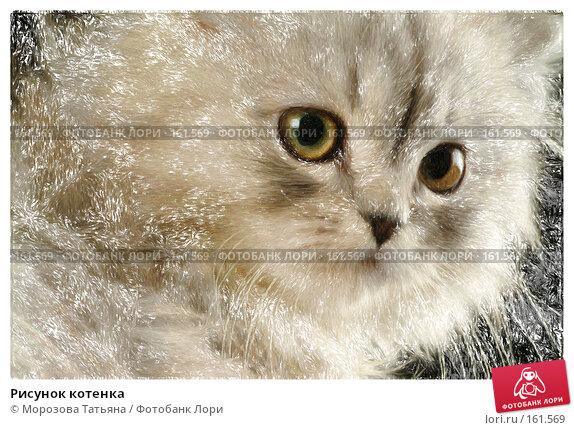 Рисунок котенка, фото № 161569, снято 17 января 2017 г. (c) Морозова Татьяна / Фотобанк Лори