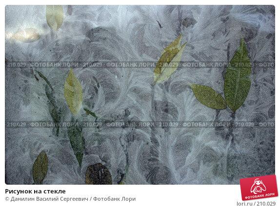 Рисунок на стекле, фото № 210029, снято 26 июня 2017 г. (c) Данилин Василий Сергеевич / Фотобанк Лори