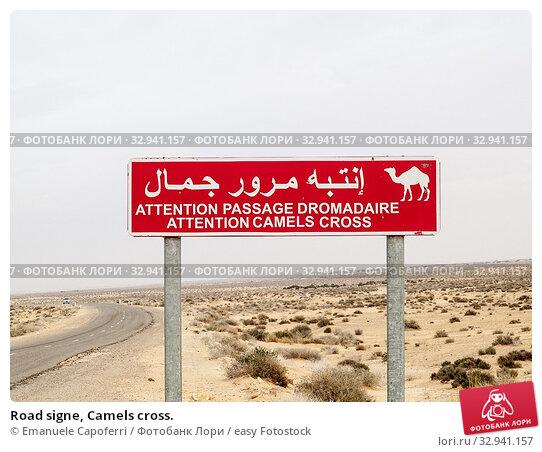 Купить «Road signe, Camels cross.», фото № 32941157, снято 17 февраля 2020 г. (c) easy Fotostock / Фотобанк Лори