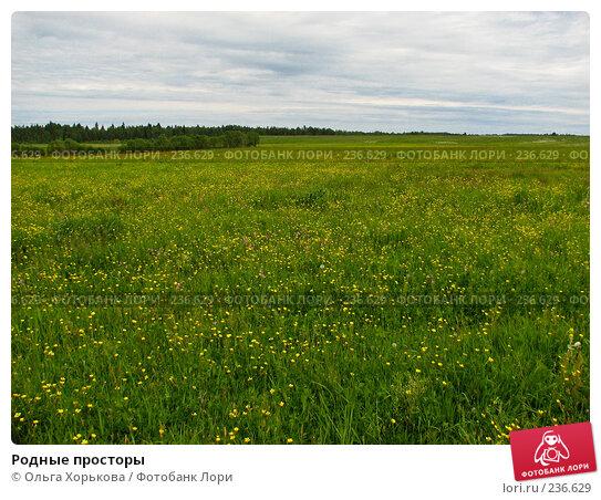 Родные просторы, фото № 236629, снято 11 июня 2007 г. (c) Ольга Хорькова / Фотобанк Лори