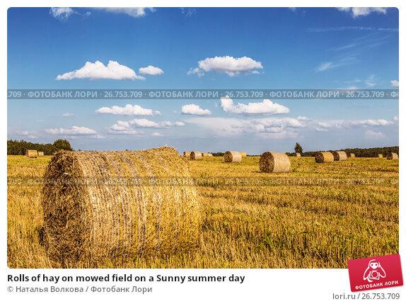 Купить «Rolls of hay on mowed field on a Sunny summer day», фото № 26753709, снято 21 августа 2016 г. (c) Наталья Волкова / Фотобанк Лори