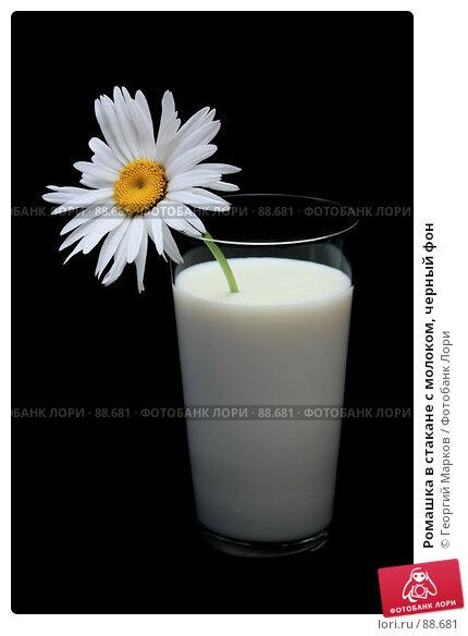 Ромашка в стакане с молоком, черный фон, фото № 88681, снято 25 июля 2006 г. (c) Георгий Марков / Фотобанк Лори
