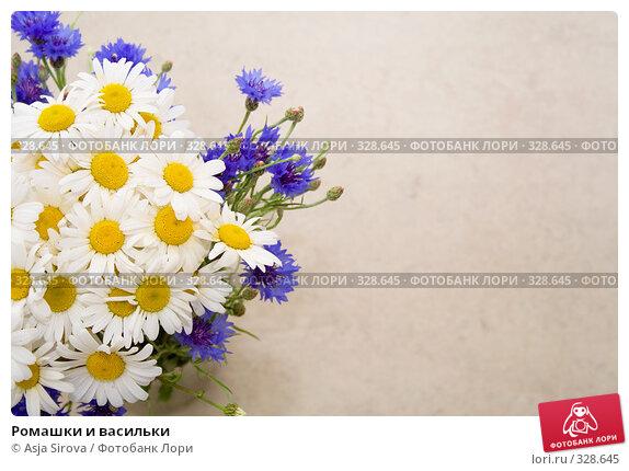 Ромашки и васильки, фото № 328645, снято 11 июня 2008 г. (c) Asja Sirova / Фотобанк Лори