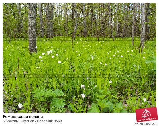 Ромашковая поляна, фото № 307653, снято 13 мая 2007 г. (c) Максим Пименов / Фотобанк Лори