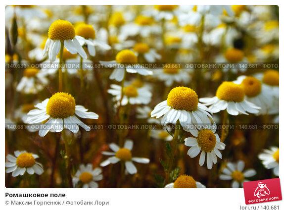 Ромашковое поле, фото № 140681, снято 6 мая 2006 г. (c) Максим Горпенюк / Фотобанк Лори