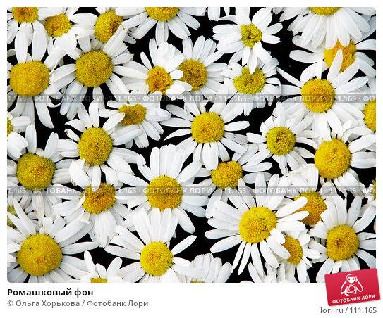 Купить «Ромашковый фон», фото № 111165, снято 23 июля 2007 г. (c) Ольга Хорькова / Фотобанк Лори