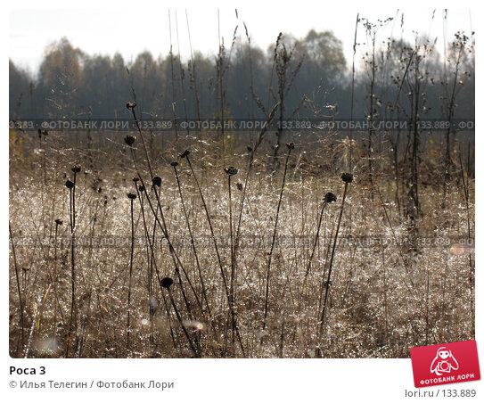 Роса 3, фото № 133889, снято 2 октября 2007 г. (c) Илья Телегин / Фотобанк Лори