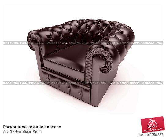 Роскошное кожаное кресло, иллюстрация № 250557 (c) ИЛ / Фотобанк Лори