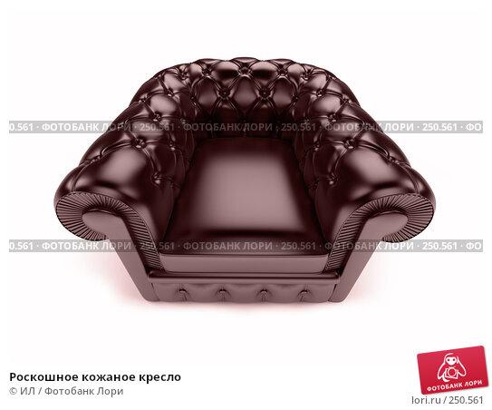 Роскошное кожаное кресло, иллюстрация № 250561 (c) ИЛ / Фотобанк Лори