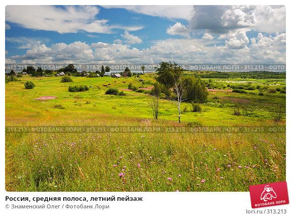 Россия, средняя полоса, летний пейзаж, эксклюзивное фото № 313213, снято 15 июля 2007 г. (c) Знаменский Олег / Фотобанк Лори