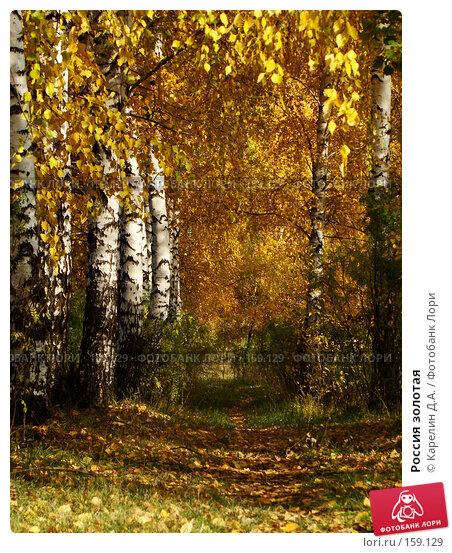 Россия золотая, фото № 159129, снято 19 октября 2007 г. (c) Карелин Д.А. / Фотобанк Лори