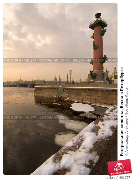 Ростральная колонна. Весна в Петербурге, эксклюзивное фото № 196277, снято 5 февраля 2008 г. (c) Александр Алексеев / Фотобанк Лори