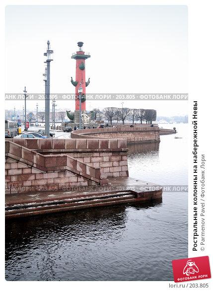 Купить «Ростральные колонны на набережной Невы», фото № 203805, снято 6 февраля 2008 г. (c) Parmenov Pavel / Фотобанк Лори