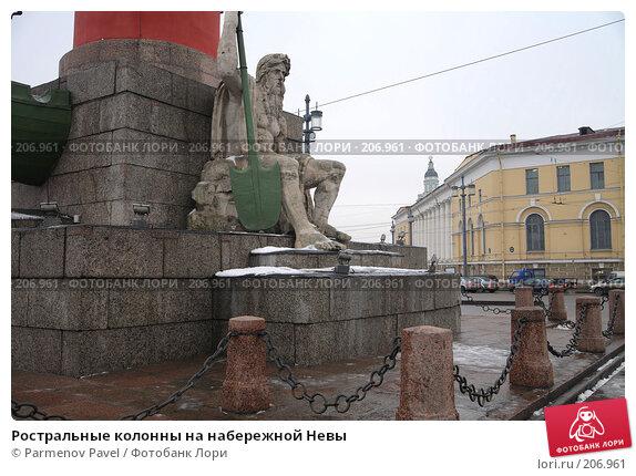 Ростральные колонны на набережной Невы, фото № 206961, снято 6 февраля 2008 г. (c) Parmenov Pavel / Фотобанк Лори