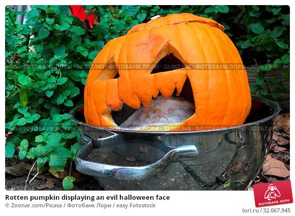 Rotten pumpkin displaying an evil halloween face. Стоковое фото, фотограф Zoonar.com/Picasa / easy Fotostock / Фотобанк Лори