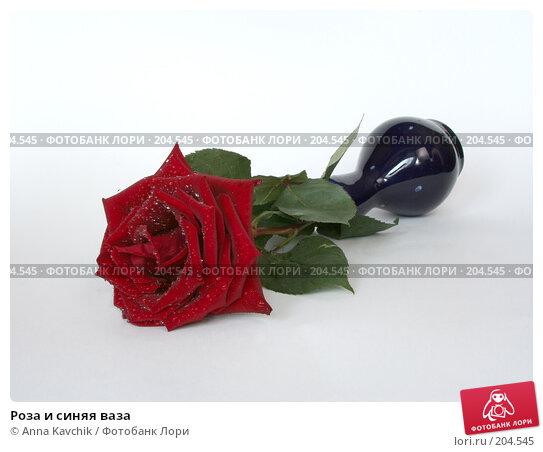 Роза и синяя ваза, фото № 204545, снято 23 декабря 2007 г. (c) Anna Kavchik / Фотобанк Лори
