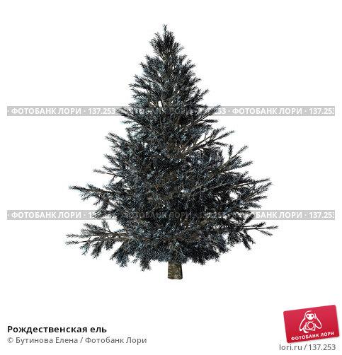 Рождественская ель, иллюстрация № 137253 (c) Бутинова Елена / Фотобанк Лори
