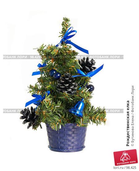 Рождественская елка, фото № 98425, снято 14 октября 2007 г. (c) Бутинова Елена / Фотобанк Лори
