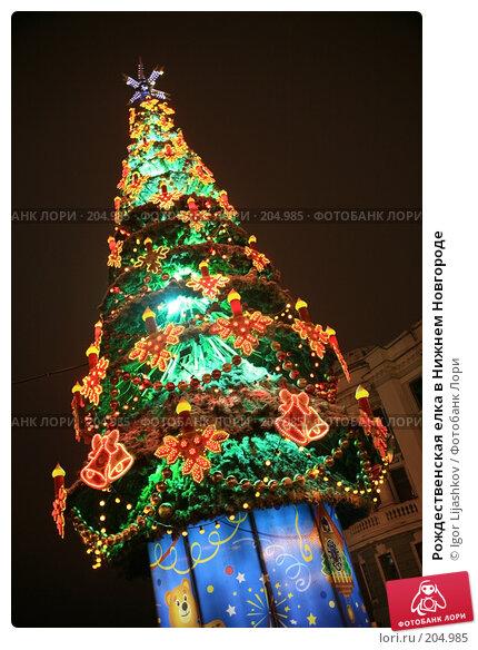 Купить «Рождественская елка в Нижнем Новгороде», фото № 204985, снято 15 декабря 2007 г. (c) Igor Lijashkov / Фотобанк Лори