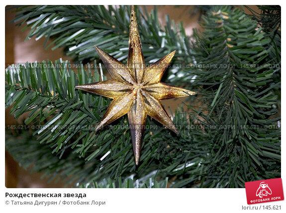 Рождественская звезда, фото № 145621, снято 12 декабря 2007 г. (c) Татьяна Дигурян / Фотобанк Лори