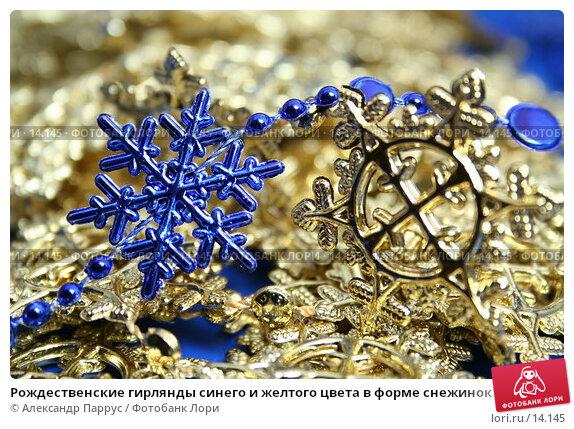 Купить «Рождественские гирлянды синего и желтого цвета в форме снежинок», фото № 14145, снято 22 ноября 2006 г. (c) Александр Паррус / Фотобанк Лори