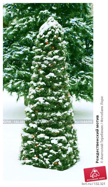 Рождественский мотив, фото № 132321, снято 28 ноября 2007 г. (c) Анатолий Теребенин / Фотобанк Лори