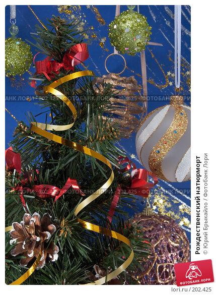 Рождественский натюрморт, фото № 202425, снято 25 ноября 2007 г. (c) Юрий Брыкайло / Фотобанк Лори