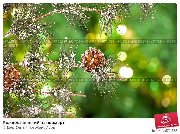 Рождественский натюрморт, фото № 671733, снято 30 октября 2008 г. (c) Raev Denis / Фотобанк Лори