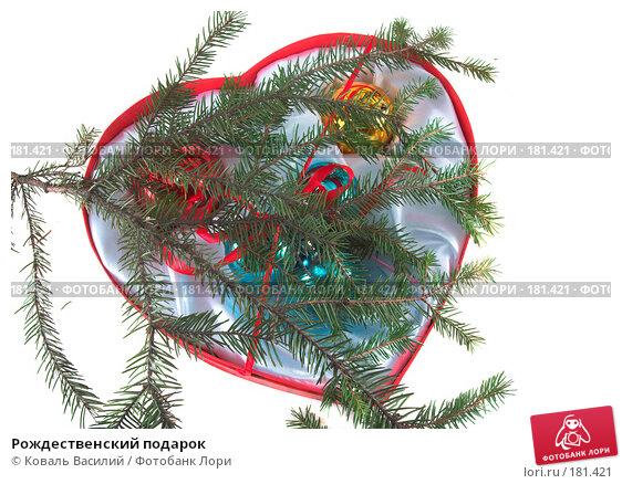 Рождественский подарок, фото № 181421, снято 22 ноября 2006 г. (c) Коваль Василий / Фотобанк Лори