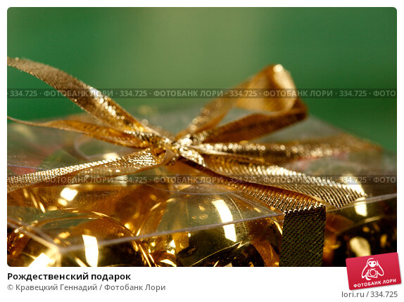 Рождественский подарок, фото № 334725, снято 13 ноября 2004 г. (c) Кравецкий Геннадий / Фотобанк Лори
